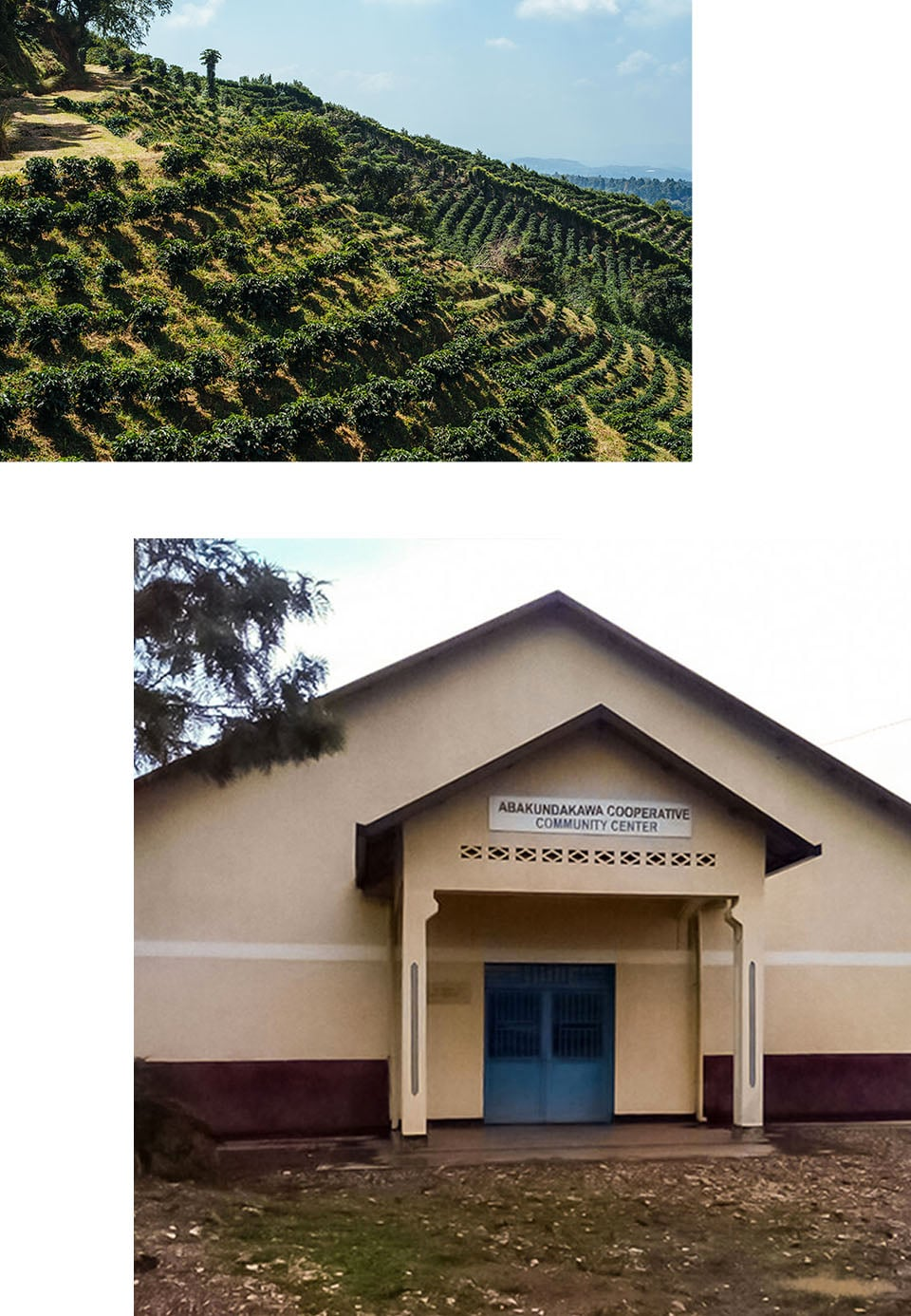 Collage of an agricultural hillside and the exterior of a community center building