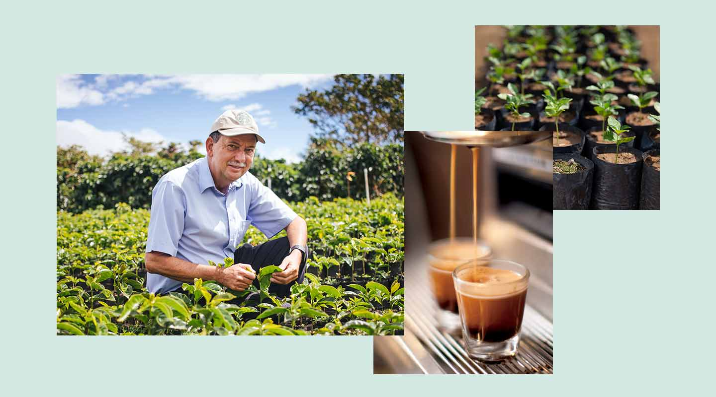 Photos of a coffee farmer, coffee tree seedlings and espresso shots being pulled.