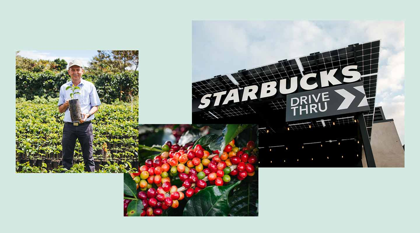 Photos of a coffee farmer, coffee cherries and a Starbucks store with solar panels.