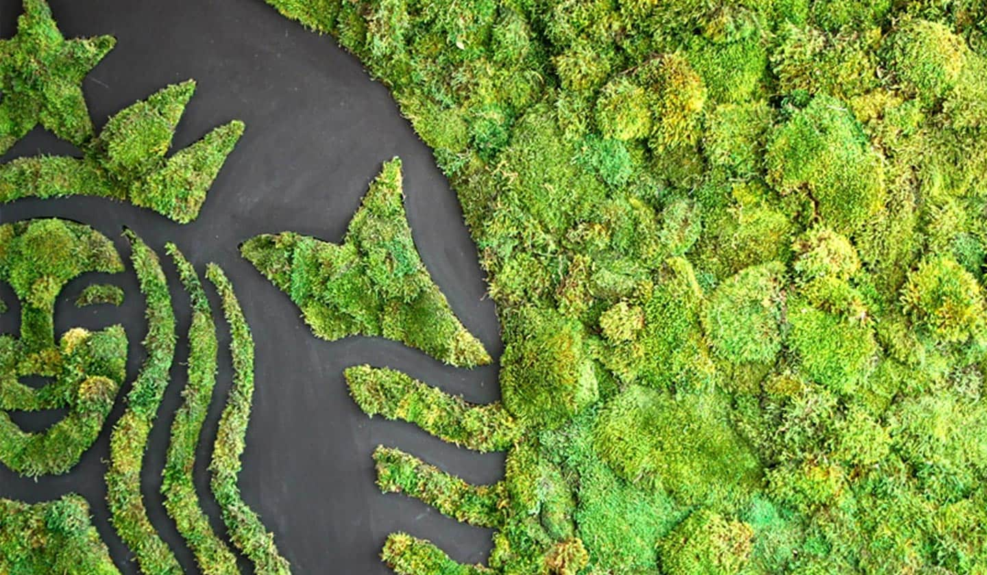 An overhead shot of the Starbucks Siren made from and surrounded by lush green plants.
