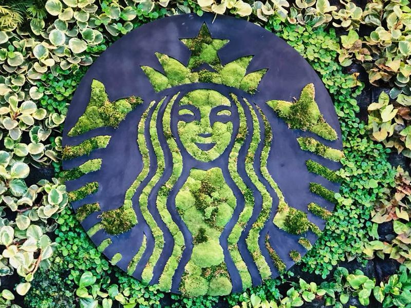 Siren logo made out of floral greenery